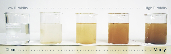 Different water quality samples showing turbidity gradient