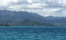 water-salinity-kaneohe