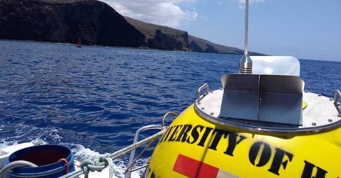 news-lanai-southwest-wave-buoy