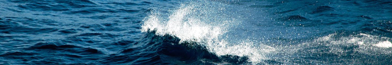 header-wave-tanapag