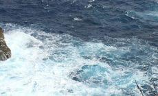 header-waveforecast-rota